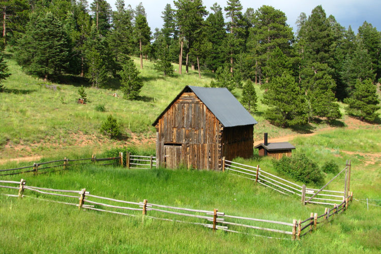 NOW CASTING – Families living off-grid / Referrals Welcome